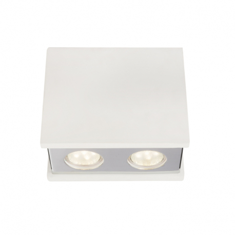 Globo 55010-2D Stropné svietidlo
