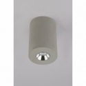 GLOBO TIMO 55011-1A Stropné svietidlo
