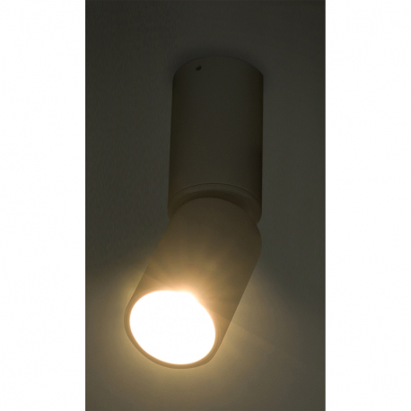 Globo 55000-8 Stropné svietidlo