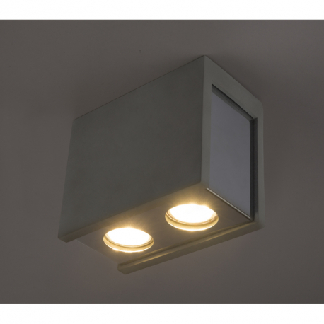 Globo 55011-2D Stropné svietidlo