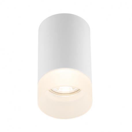 Globo 12017W Stropné svietidlo