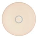 GLOBO CONNOR 41386-30RGBSH Stropné svietidlo