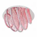 GLOBO GERT 67104-32 Stropné svietidlo