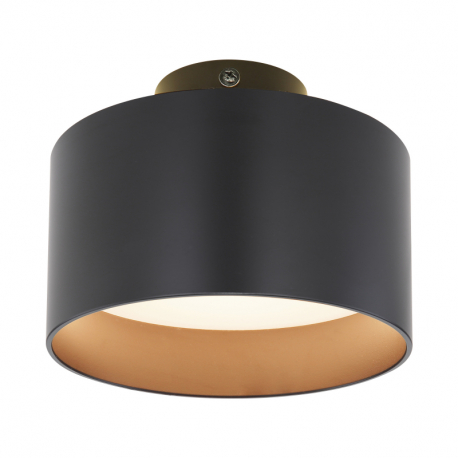 Globo 12016B Stropné svietidlo
