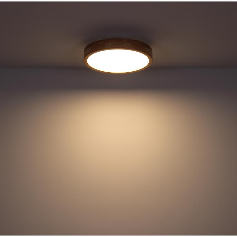 GLOBO RAINER 41745-24 Stropné svietidlo