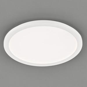 TRIO R62922401 CAMILLUS Stropní svítidlo